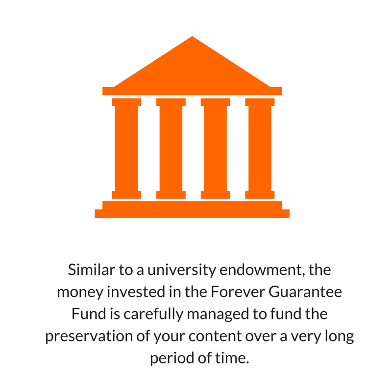 Forever Storage University Endowment